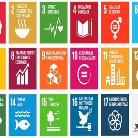 Biblioteca: Advocacy e Agenda 2030